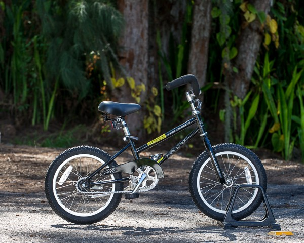 "Kids Single Speed Bike 16""/20"" coaster brake"