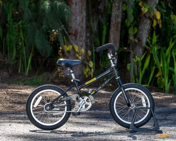 """Kids Single Speed Bike 16""""/20"""" coaster brake"""